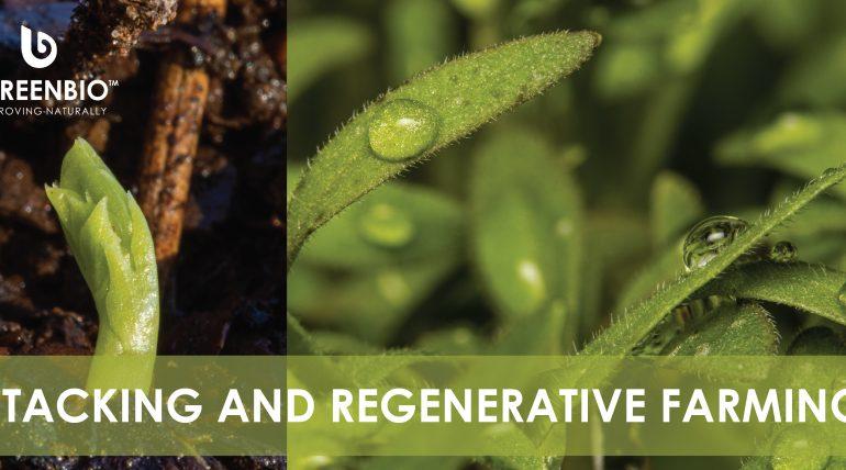 Stacking in Regenerative Farming