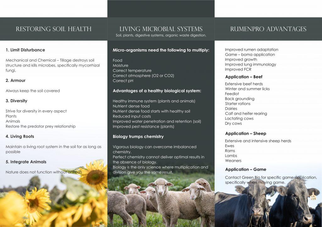 Rumenpro probiotics for ruminants