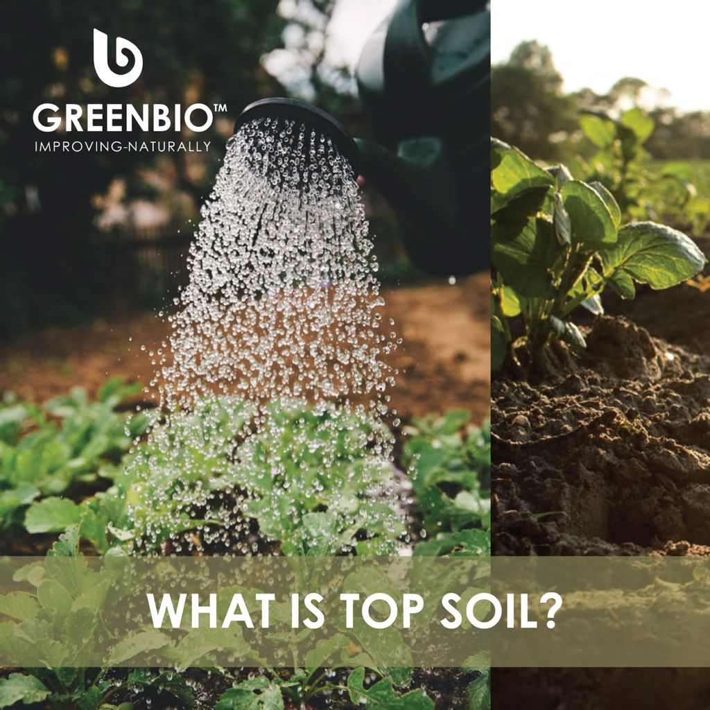 What is topsoil? Topsoil is the uppermost layer of soil